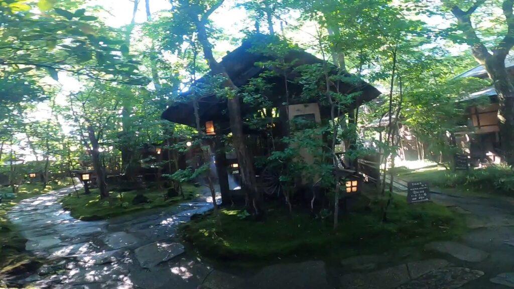 お宿のし湯のお庭。こちらも緑が溢れています。