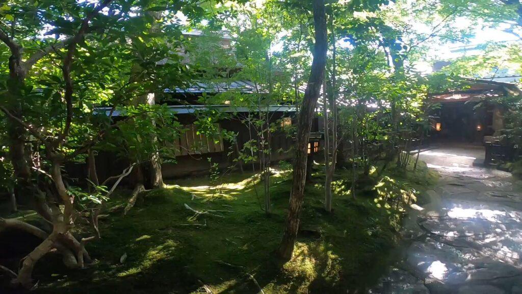 お宿のし湯さんのお庭はきちんとお手入れされていて美しいです